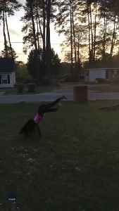 Young Girl With Prosthetic Leg Performs Impressive Tumbling Routine [Video]
