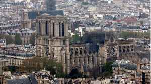 Offerings of French Oak Trees Pledged For The Rebuilding Of Notre-Dame [Video]