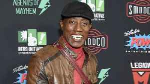 News video: Wesley Snipes Joins Indie Action Thriller 'Payline' As Star and Exec Producer | THR News