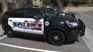 American Flags Graphic on Laguna Beach Police Cars Spark Backlash