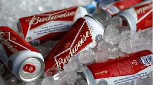 Limited-Edition Budweiser Brew Released In Honor Of Moon Landing [Video]