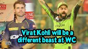 IPL 2019 | Virat Kohli will be a different beast at WC: Lockie [Video]
