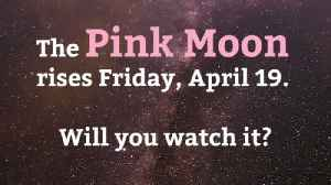 The Pink Moon Is Coming [Video]