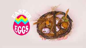 My DIY Easter Egg: Pet Owners Independence Day [Video]