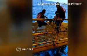 News video: Dog rescued over 100 miles away from shore