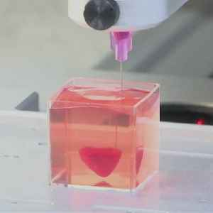 This is the first ever 3D-printed heart with real human tissue and vessels [Video]
