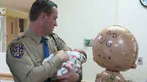 Officer Jumps into Action After Baby Born in Car on Side of Highway Wasn`t Breathing [Video]