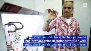 Scientists Successfully 3D-Prints Heart From Human Cells [Video]
