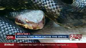 Staying safe as 'snake season' strikes in Oklahoma [Video]