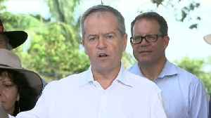 Shorten Attacks ScoMo Over Climate Change 'Stupidity' [Video]