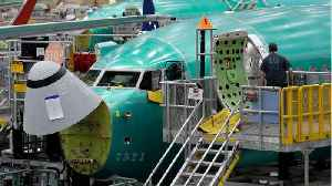 Panel Sends Draft Of 737 MAX Update To FAA [Video]