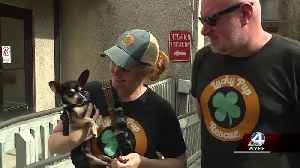 Dog taken from downtown Greenville hotel has been returned, police say [Video]