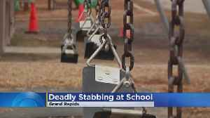 Police: Teen Accused Of Fatally Stabbing Woman At Playground [Video]