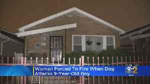 Woman Forced To Fire When Dog Attacks 9-Year-Old Boy [Video]
