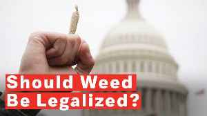 Should Weed Be Legalized? [Video]