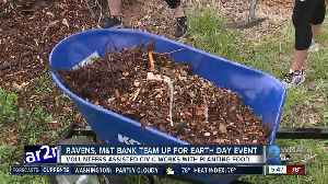Ravens, M&T Bank team up for Earth Day event [Video]