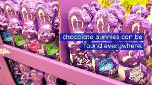 This Is Why We Eat Chocolate Bunnies for Easter [Video]