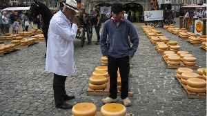 Dutch Cheesemakers In The City Of Gouda Are Concerned About U.S. Tariffs [Video]