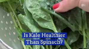 Kale Or Spinach Question: Which Is Best? [Video]
