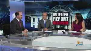 Former Assistant U.S. Attorney David Weinstein Breaks Down Mueller Report [Video]