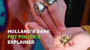 What the hell does a Dutch weed activist fight for? [Video]