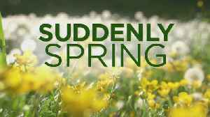 Suddenly Spring: Beautiful Weekend Forecast & Spring Gardening Tips [Video]
