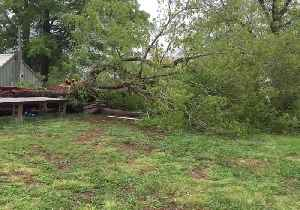 Tree Downed in Raleigh as Damaging Storms Barrel Up Atlantic Coast [Video]