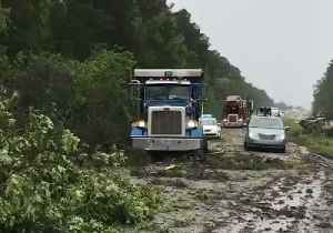 Multiple Trees Downed on I-26 Near Orangeburg as Storms Sweep South Carolina [Video]