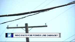 Who pays for low-hanging electric lines? You, or your utility company? [Video]