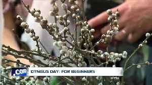 Dyngus Day: what's it all about? [Video]
