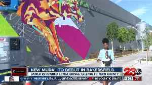 New mural to debut in Central Bakersfield [Video]