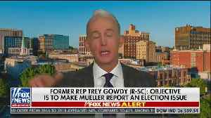 Trey Gowdy says Mueller should have just charged Trump [Video]