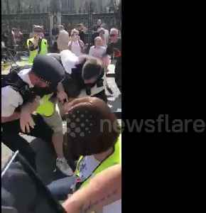 Pro-Brexit demonstrators clash with police outside UK Houses of Parliament [Video]