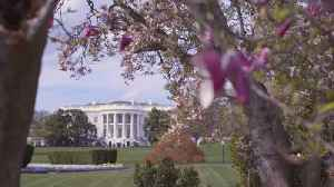 It's Springtime At The White House [Video]