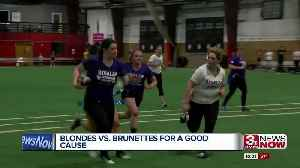 Brunettes vs. blondes face off to fight Alzheimer's [Video]