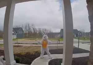 Doorbell Camera Captures 'Easter Bunny' Dancing Outside Ohio Porch [Video]