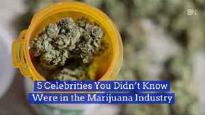 These Celebrities Invested In Cannabis [Video]