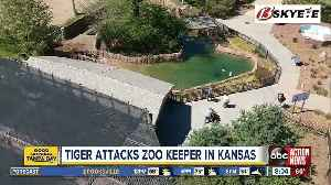 A zookeeper suffered 'lacerations and punctures' in a tiger attack at the zoo in Topeka, Kansas [Video]