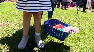 16,000 Easter Eggs Up For Grabs At Easter Egg Hunt On Near South Side [Video]