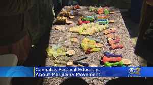Cannabis Festival Educates About Marijuana Movement [Video]