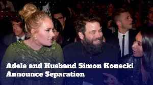 Adele and Husband Simon Konecki Announce Separation [Video]