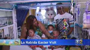 Easter Bunny Visits Children At Chicago's La Rabida Hospital [Video]