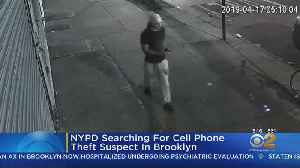 Search For Suspected Cellphone Thief [Video]