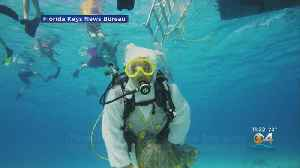Underwater Easter Egg Hunt In Florida Keys [Video]