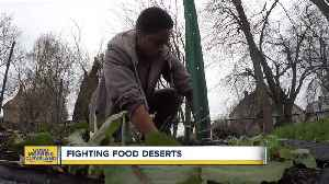 Green Corps helping communities get access to healthy food [Video]