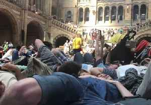 Extinction Rebellion Protesters Stage 'Die-In' at Natural History Museum [Video]