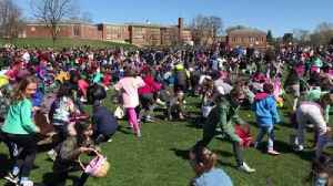 Hinsdale Easter egg hunt [Video]
