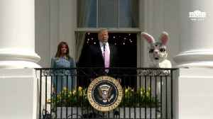 Watch: Easter Bunny Claps As Trump Boasts About Rebuilding Military During Egg Roll Event With Kids [Video]