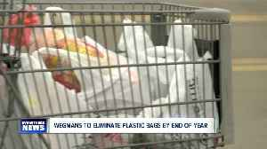 Wegmans will eliminate plastic bags by year end [Video]
