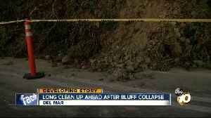 Del Mar bluff collapses feet from ocean view homes [Video]